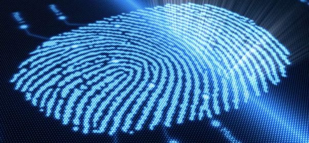 How Can You Protect Your Online Identity from Fraudsters